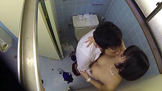 Japanese milf in public toilet