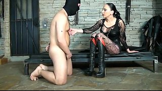 Mistress trains her bootlicker