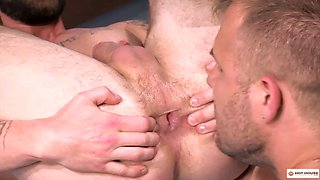 warm house perfect ass pounded