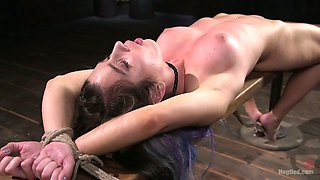 Kinky fucker examines pussy of tied up and suspended hoochie Serena Blair